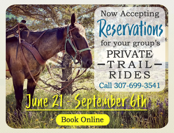 reservations for jackson trail rides